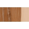 Terzia õlivärv Raw Sienna 0592 37ml